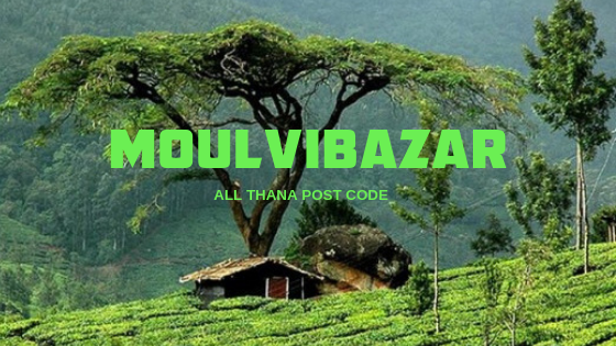 Moulvibazar District – All Thana or Upazila Postcode or Zip Code